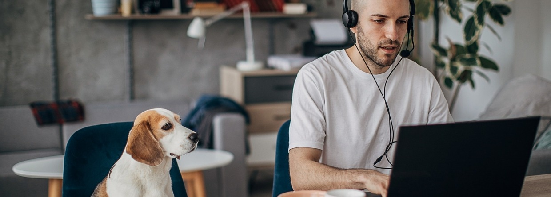 Man die aan laptop thuis werkt, met zijn hond naast hem op de stoel
